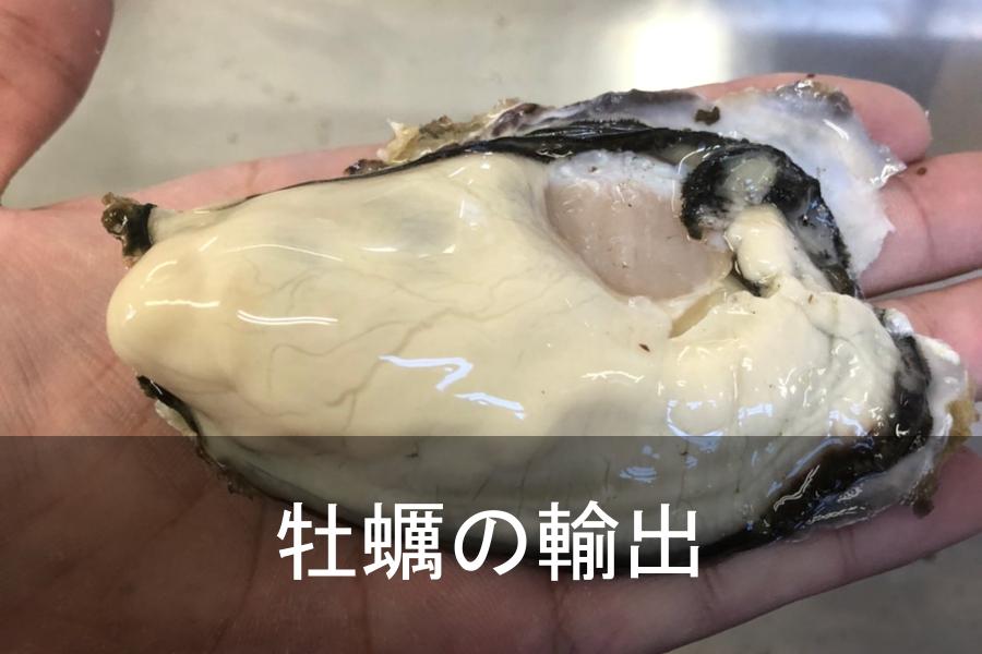 oyster-thumbnail